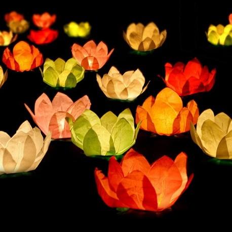 Lanternes flottantes x 6