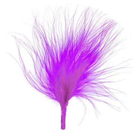 Plume de couleur Violet