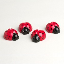 4 bougies coccinelle