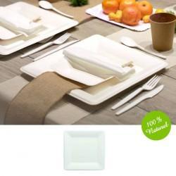 25 assiettes carrée Biodégradable 23cm
