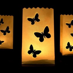 Lanterne photophore Papillon X 10