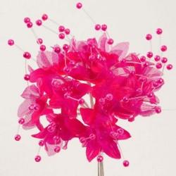Fleur Perle Fuchsia